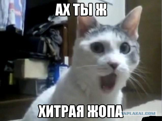 Дмитрий Вержиковский verydima